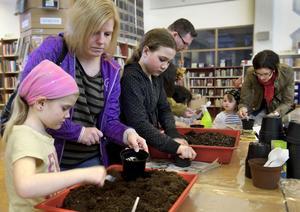 Saga Hansson, 6 år, och mamma Helena Hansson hjälptes åt med planteringen.