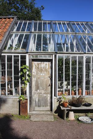 Växthuset har Peter och hans före detta sambo byggt.