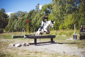 Arbottna Horse Show på Muskö . Foto: Jonas Fajers
