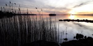 Mona Holopainen vann förra månaden med den här bilden från en tidig morgon vid Malmön utanför Köping.