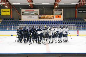 Borlänge Hockey under försäsongen. Foto: Mathias Andersson.