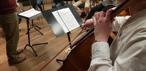 Södertälje symfoniorkester har funnits sedan 1930-talet. På söndag spelar de Beethoven.