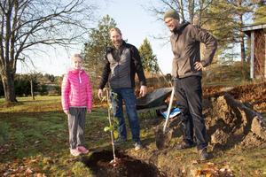 Janne Eriksson i mitten med dottern Wira till vänster och Matti Leino till höger. I mitten en av de färska plantorna.