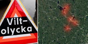 Nio viltolyckor i länet under måndagsmorgonen. Foto: Anders Sjöberg, Google maps