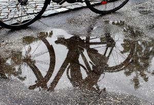 Idag, den 12 maj, är det cykelns dag. Då föreslår Miljöpartiet tre åtgärder för att Sundsvall ska bli en attraktiv cykelstad. Bild: Jurek Holzer/TT