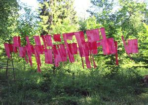 Annika Erixån: Två bönevävstolar. Tygerna rör sig i vinden likt kläder på torklinan. Foto: Niels Hebert