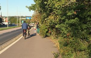 Mäktig grönska spärrar vägen. Det är trångt för gångtrafikanter och cyklister på flera platser i Västerås.