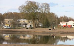 Från de nya bostäderna i Stadsträdgården, har det blivit bättre utsikt över Mälaren. Runt dammen löper ett nytt promenadstråk. Till höger syns villor i Fågelvik.
