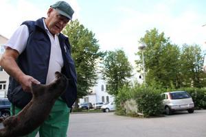 Sven Granström hittade den trafikdödade uttern och lämnade den till polisen. Nu har den skickats på obduktion.