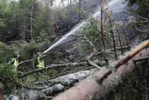 Räddningstjänsten bekämpade fem skogsbränder i Vetlanda kommun under tisdagseftermiddagen. OBS: Bilden är en arkivbild.