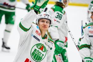 Tidigare Leksandsbacken Daniel Bertov spelar numera i Rögle BK.