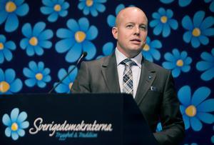 Sverigedemokraten Björn Söder säger att judar, samer, romer, tornedalingar och sverigefinnar inte är svenskar. Foto: Per Groth/TT