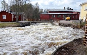 Enorma mängder vatten forsar fram i Stångån.