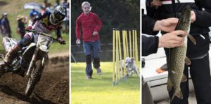 Speedway, agility och sportfiske ingår nu i det friskvårdsbidrag som arbetsgivare kan ge skattefritt till sina anställda. FOTO: Fredrik Sandberg/TT