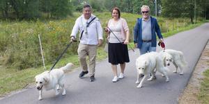 Det finns cirka 10 000 hundar i kommunen men bara sex hundgårdar. Daniel Ernerot, Amanda Agestav och Mats Lundberg gör tummen upp för förslaget att göra en hundgård på ängen i Mälarparken.