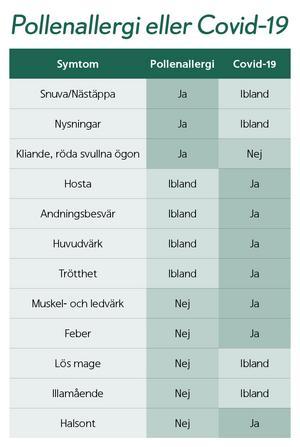 Så ser du skillnad på pollenallergi och covid-19. Grafik och innehåll: Apoteket.se