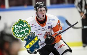 Emil Lundberg har spelat de två senaste säsongerna i SHL med Karlskrona. Den gångna säsongen blev det 12 poäng på 49 matcher.Foto: Andreas Hillergren / TT