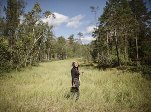 Det är snålt med bär men det finns om man letar mellan  stenar, i skugglägen, kring vattendrag och myrar.