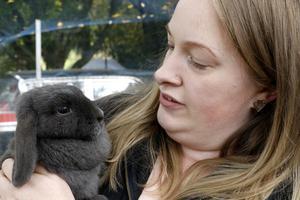 Smådjurschansen hjälper just nu Länsstyrelsen i Örebro med 42 omhändertagna kaniner som ska omplaceras.