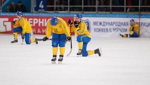 Det är dubbel otur för Johan Löfstedt och hands landslagskollegor, efter förlusten i VM-finalen.Foto: Rikard Bäckman / Bandypuls.se / TT