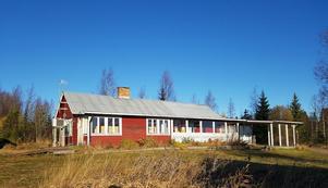 En röd stuga med 20 hektar skog lockar många intresserade. Foto: LRF Konsult