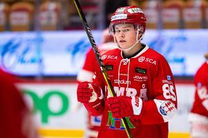 Filip Westerlund i Timråtröjan i vintras. Nu är han tillbaka.