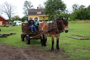 Sofie Gustafsson och Maja fick pröva på att köra vagn dragen av åttaåriga nordsvensken Frippe.
