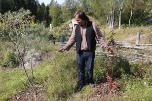 Viktor Säfve berättar om kvävefixering och det magiska band det skapar mellan olika arter. I hans högra han är en havtorn som ger ätliga bär. I högra handen har han ett plommonträd.Havtornet kan utvinna kväve ur atmosfären och som med hjälp av svampar fördelar kvävet i trädgården.