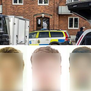 Brottsligheten i Sverige - Rapportgrupp ffentliche Gruppe