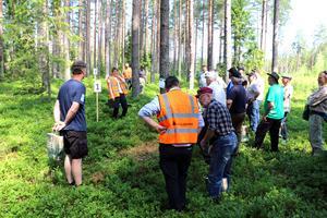 Skogsinspektör Tarja Alton berättar om skogsgödsling.