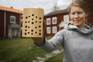 Det finns många olika varianter på hur man bygger insektshotell.