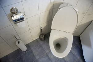 Jag har bott i min hyresrätt i över tio år och toaringen har hållit till för cirka ett år sedan. Då sprack ett av fästena i plasten som man viker upp ryggstödet med. Jag trodde naturligtvis att detta ingick i ämnet slitagedelar.