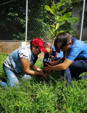 Här planteras det träd vid en kombinerad förskola/fritidshem i El Salvador.