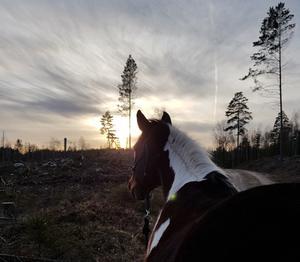 En härlig eftermiddag i början av februari med världens bästa sällskap ❤, skriver Ebba Jonsson.