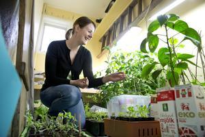 Innerummet. Anna Forslund vill testa aquaponisk odling – grönsaks- och fiskodling.Foto: Margareta Andersson