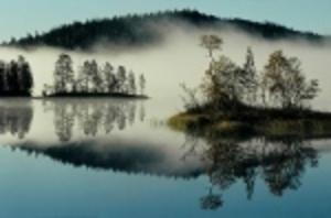 Svensk vann världens största fototävling