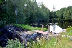 I Sörån stoppar en gammal kvarndamm fiskarna från att vandra uppströms.