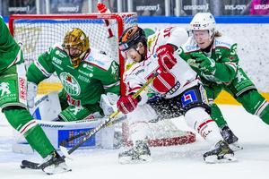 Bild: Ludvig Thunman/Bildbyrån