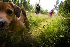 Karin Lindberg och Minna Lindberg med hunden Chili.