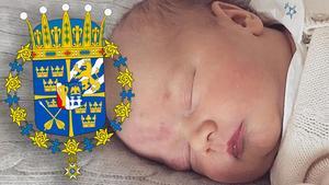 Så här ser prins Gabriels vapen ut. Foto: Kungahuset.se/Riksarkivet