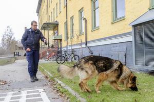 Hundpatrull sökte spår vid Friggaskolan Östersund där en man hittades död under måndagen. Arkivbild.