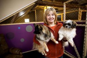Anett Hellströms egna hundar, Rollo och Maxi, får snart sällskap av andra jyckar på hundpensionatet i Svedje, Älandsbro.