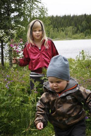 I Los hjälptes barnen Ida Olsson och Alfons Persson åt att plocka blommor.