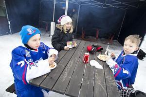Ludvig, Josefin och Hjalmar Sandin laddar för nästa match.