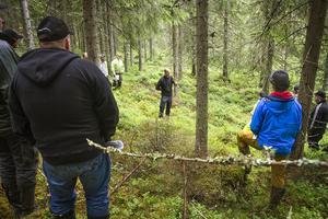 Numera ska skördarna inte köras närmare än fem till tio meter från vattendrag och våtmarker.
