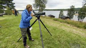 Martina Haag tittar efter fåglar i SVT:s