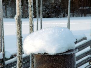 Naturens snöskulptur av igelkott på grindstolpe