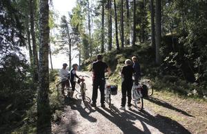 Turen går delvis genom fin gammal skog.
