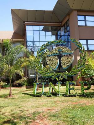 UNEP, FN:s organ för miljövård, har nyligen flyttat in i ett nytt kontorskomplex i det jättelika FN-högkvarteret i Nairobi. Miljövänligt, naturligtvis – och en enorm kontrast mot stadens fattigare delar. Foto: Kjell Ahnfelt