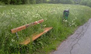 Gräsligt !!Hur tänker Västerås stad när man inte sköter om sina gräsytor.Det vore trevligt om vi kunde använda bänkarna istället.Vi betalar väll skatt för sånt här ???